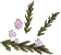 Lowland heather detail.png