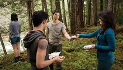 DiarioTwilight 21-wolf-esme-bd-