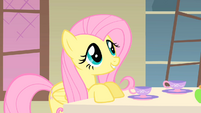 Fluttershy talking to the Princess S01E22