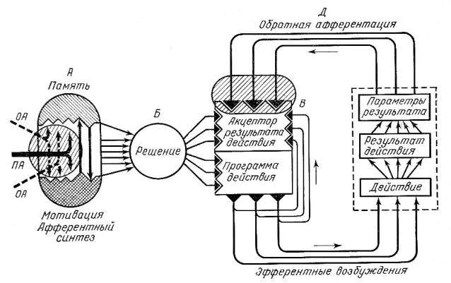 Архитектура функциональной системы приведена на рис. 2. На схеме представлена последовательность действий при...
