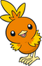 Torchic Dream