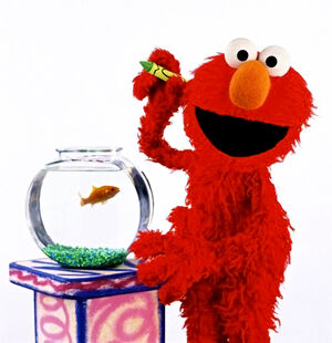 Elmo&amp;GoldfishDorothy