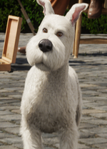 Snowy in the film
