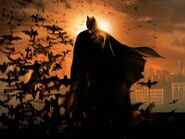 Batmanbegins bats