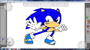 Anthony the Hedgehog by Meta;