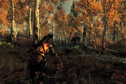 Hunting in Skyrim