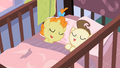 Sleeping twins S2E13.png
