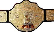 WCW World Champion 2