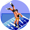 SuperFireProwrestlingIIIFinalBout-icon