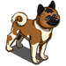 American Akita-icon