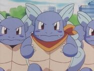 Team Wartortle