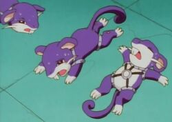 A.J.&#39;s Rattata; Rest