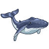 Humpback Whale-icon