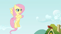 Defiant Fluttershy S2E19