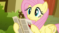 Fluttershy popup S02E19