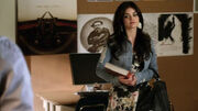PLL202 (4)