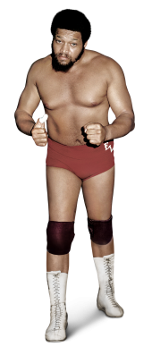Ernie Ladd Full