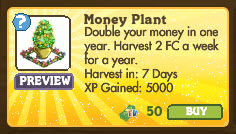 Money Plant Market Info
