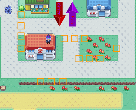 Viridian City Layout.png