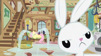 Fluttershy and Angel S02E23