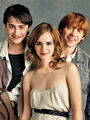 HarryHermioneandRon-1.jpg