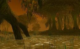 Swamp of Sorrows