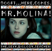 Mr.molina