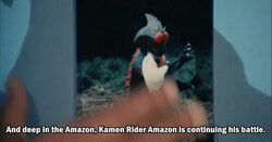 Amazon (JAKQ vs Gorenger)
