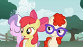 Apple Bloom where did you come from? S1E12.png