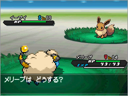 [Hilo Oficial] Pokemon Blanco/Negro 2 B2W2_Campo_de_Batalla