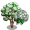 Blackhaw Tree-icon