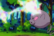 EP369 Spoink usando psicorrayo