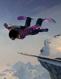Ssx-wingsuit