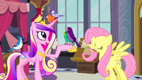 Princess Cadance and Fluttershy with birds S2E26