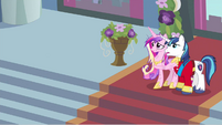 Princess Cadance & Shining Armor scared S2E26