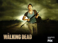 The-Walking-Dead-the-walking-dead-30371929-1024-768