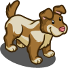 Poi Dog-icon