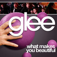 Glee - what makes you beautiful