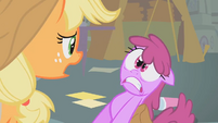 Applejack says I'm sorry ma'am S1E12