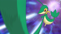 EP739 Snivy usando ltigo cepa