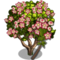 Crown Flower Tree-icon