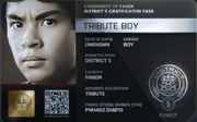 District 5 Tribute Boy ID Card