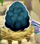 Dragon City Storm Dragon Egg