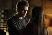 Stelena 318