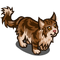 Brown Maine Coon-icon