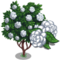 White Camellia Tree-icon