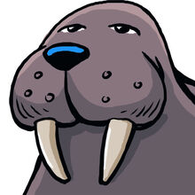 Fbwalrus