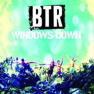 WindowsDownArtwork