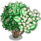 Japanese Privet Tree-icon