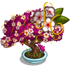 Cherry Bonsai II Tree-icon
